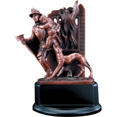 Fireman Award