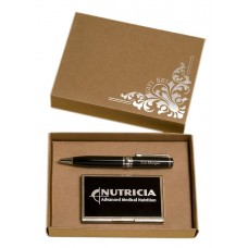 Chrome Plated Pen and Business Card Case